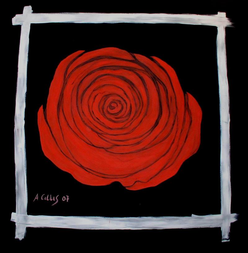 La rosa di Goldoni